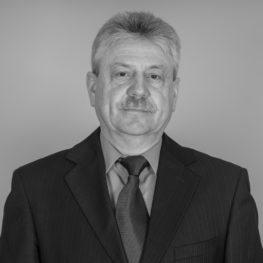 Jevgenijus  Toldinas